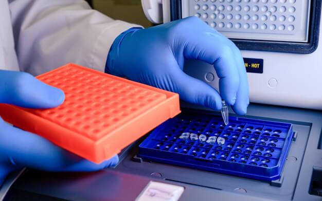 Donde Estudio Ingeniería Genética