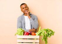 Curso en Cultivo de Vegetales Orgánicos