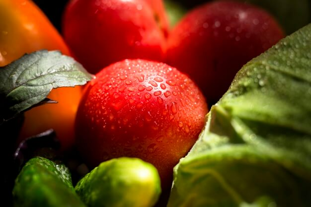 Curso en Cultivo de Vegetales Orgánicos Gratuito.